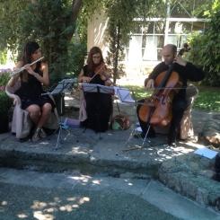 trio coctel